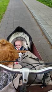 5-15-speeltuin-amsterdam-frankendael-kinderen-baby-Watergraafsmeer-nanny-annelon-nola-gastouder-bakfiets