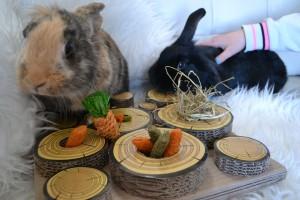 5-25-nanny-spelen-konijnen-huisdierenplein-kinderen-dieren-konijnenspel-speelballen-boredom-breaker-3