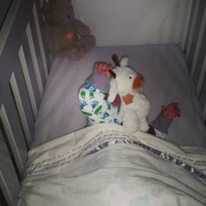 8-15-bed-ritueel-bedritueel-ritme-dtructuur-slapen-gaan-baby-fresk-slaapzak-nanny-amsterdam-moeder-giraffe