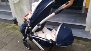 12-15-joolz-geo-donkerblauw-duo-nanny-tweeling-moeder-amsterdam-handig-baby-peuter-kinderwagen-duowagen-tandem-beertjes