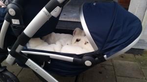 12-15-joolz-geo-donkerblauw-duo-nanny-tweeling-moeder-amsterdam-handig-baby-peuter-kinderwagen-duowagen-tandem-onder