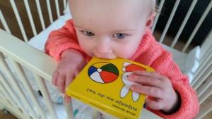 1-16-mercis-boekje-nijntje-en-de-bal-baby-dreumes-peuter-klein-boekje-cadeau-baby-dreumes-leuk-nanny-moeder-annelon-blog