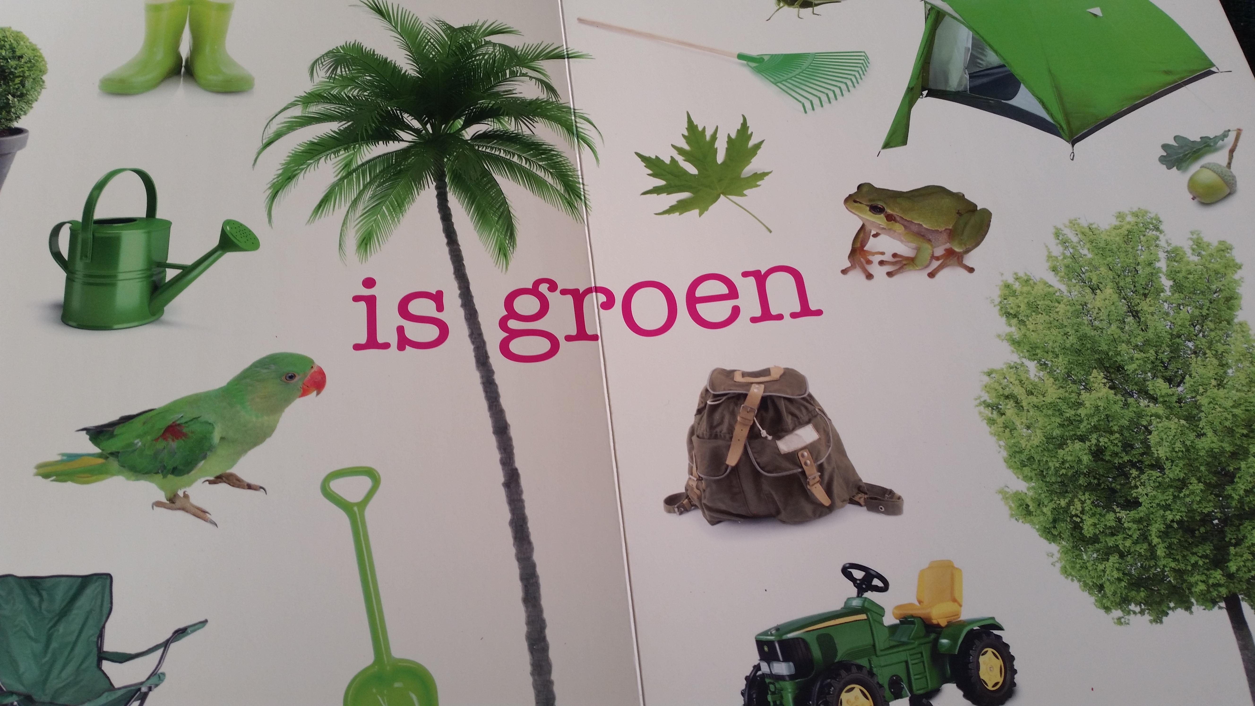 5-15-boek-dik-karton-aanwijsboek-aanwijzen-dingen-1-jaar-2-3-4-die-daar-leuk-nanny-moeder-amsterdam-verjaardag-groen