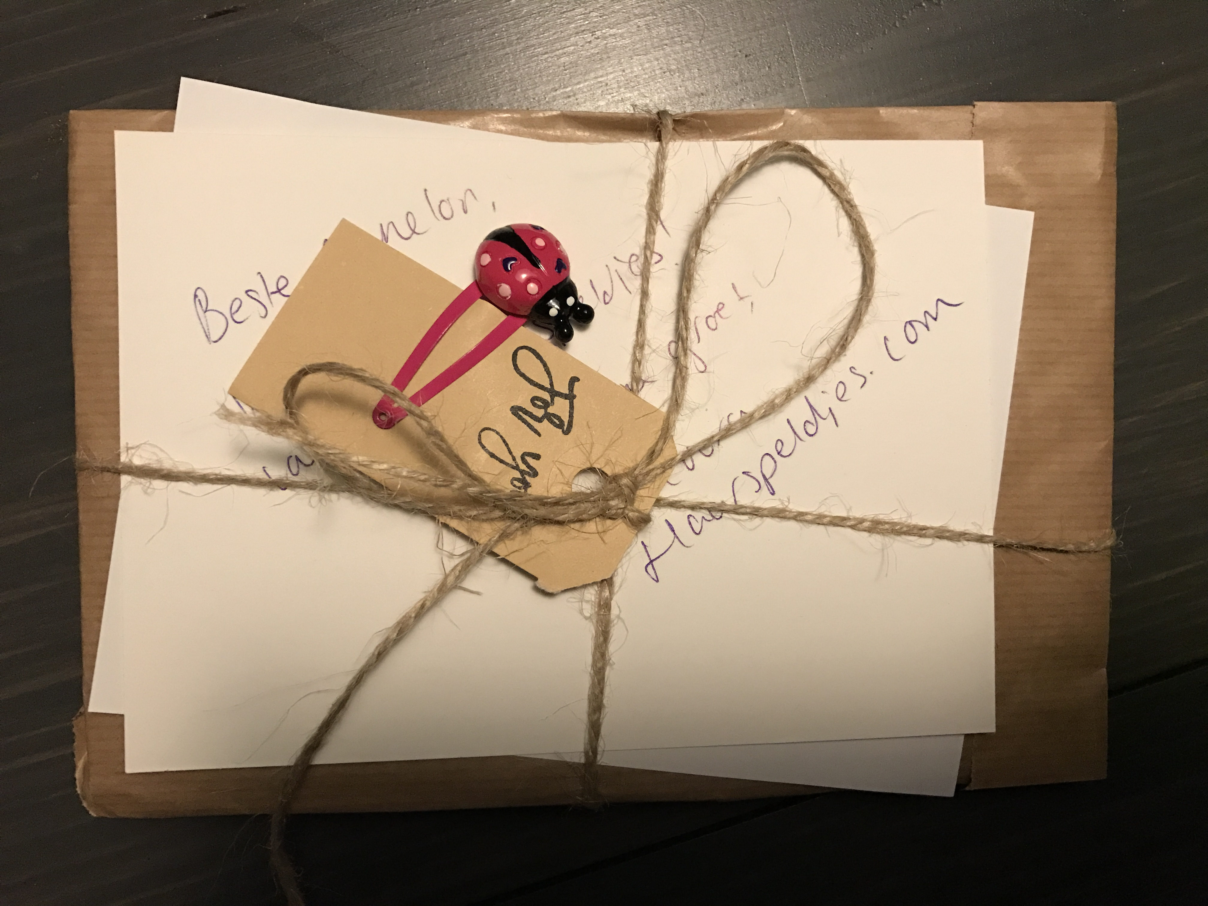 11-16-haarspeldjes-sinterklaas-kerst-cadeau-meisje-leuk-verpakt-verpakking-mooi-strikjes-klipjes-baby-tip-cadeau-verpakt